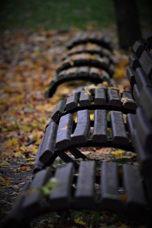 Осенние листья - Eddy Foto