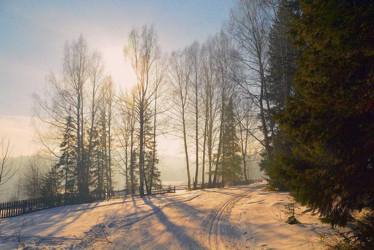морозное утро - леонид логинов