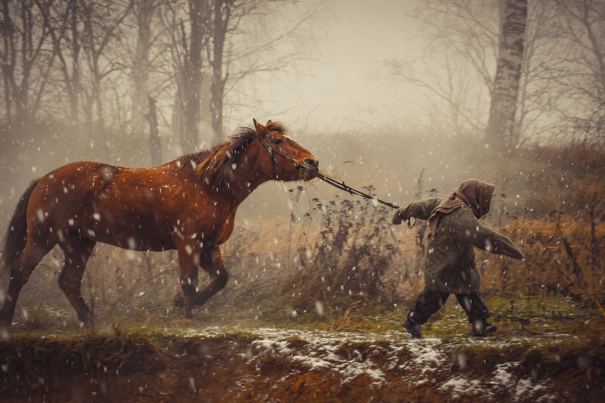 Пойдем домой - Андрей Ерастов