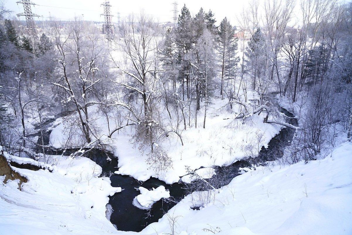 Зима Новосибирск - Екатерина Маринина