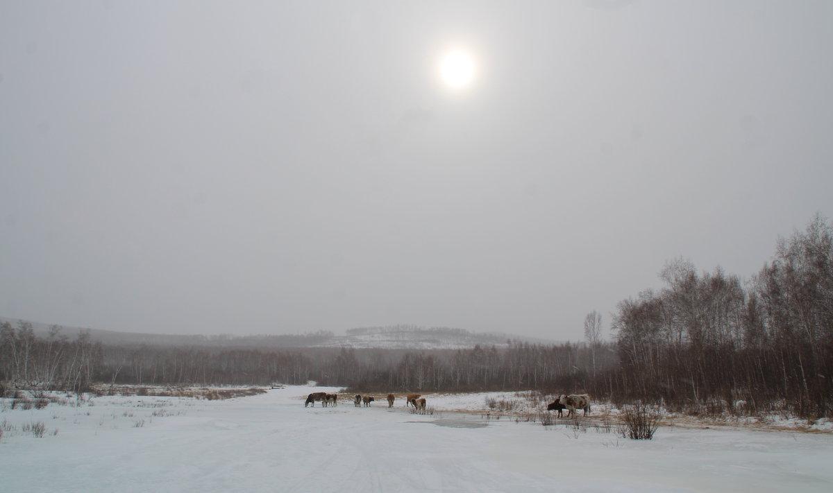 идет снег - Анна