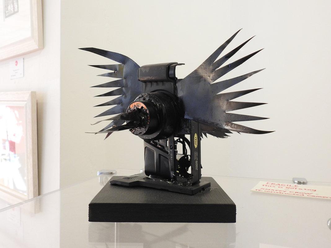 """""""Крутая ворона"""" - Natalia Harries"""