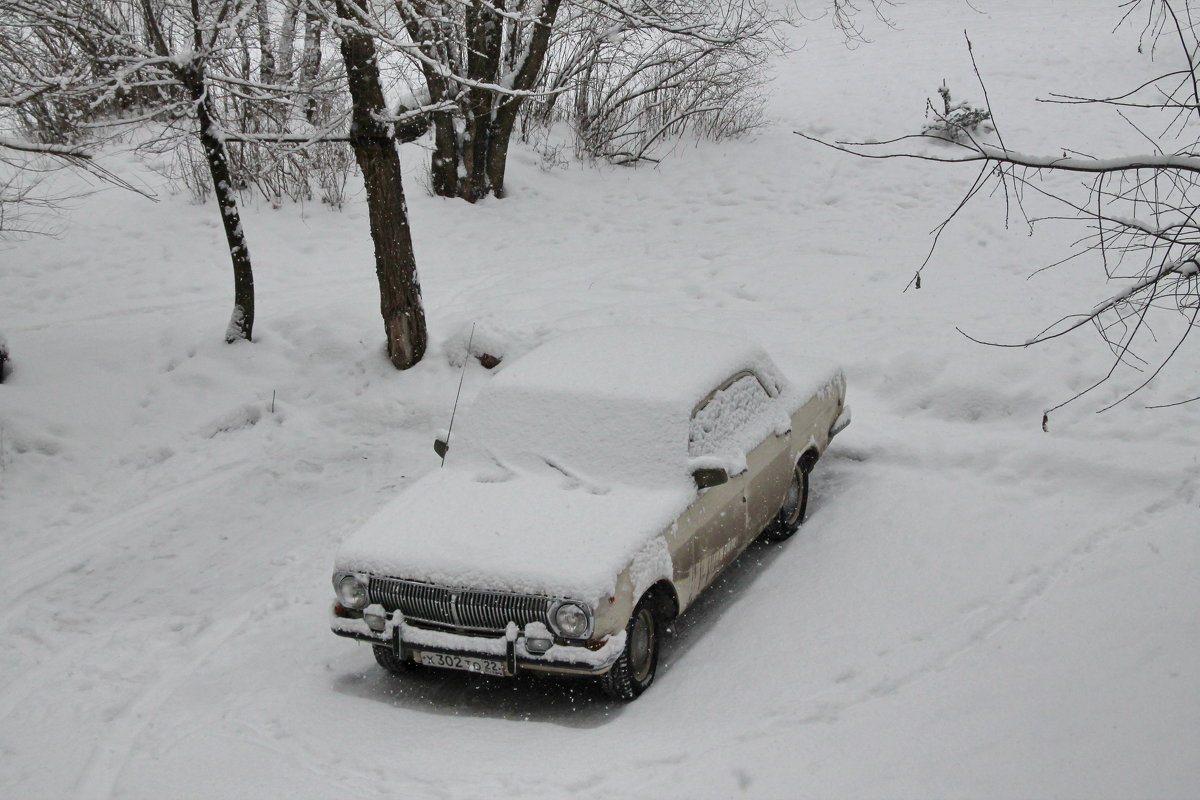 Засыпало февральским снегом - Олег Афанасьевич Сергеев