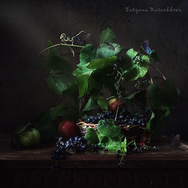 Домашний виноград. 2012 - Татьяна Карачкова