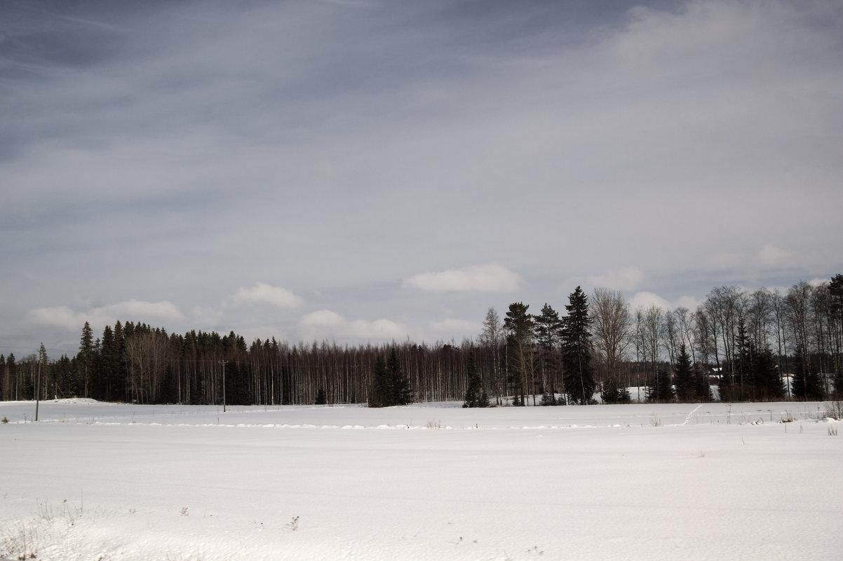 Дорожный пейзаж - Aнна Зарубина