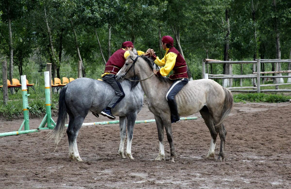 Аударыспак – борьба на лошадях. - Anna Gornostayeva