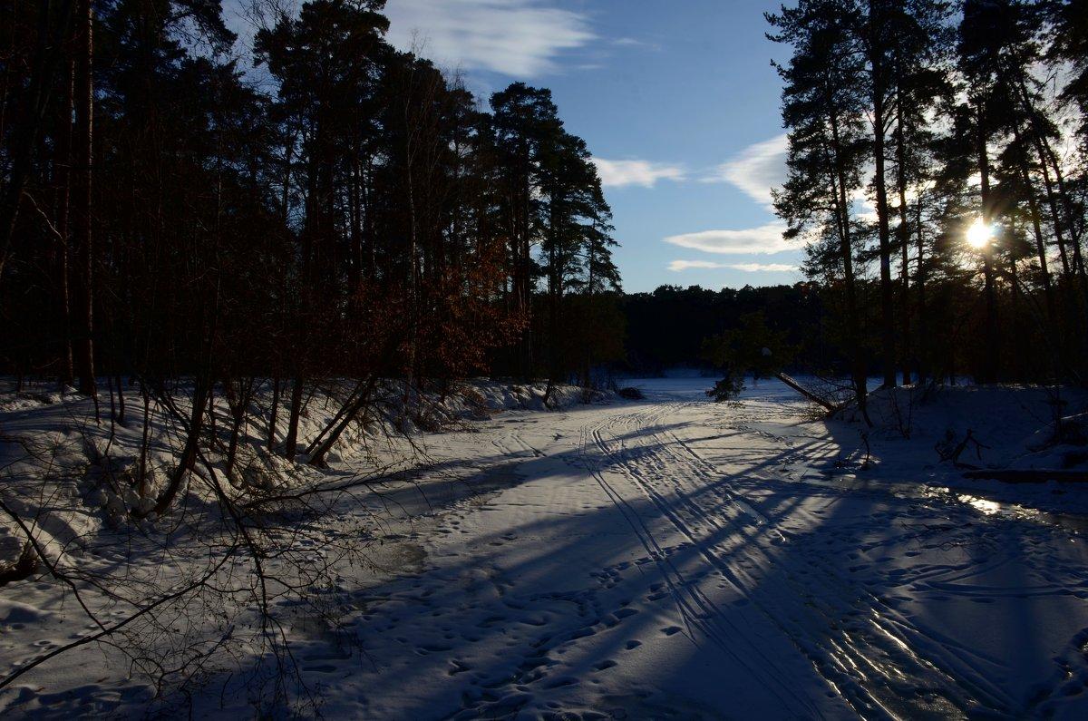 Последние аккорды зимы... - Ольга Русанова (olg-rusanowa2010)