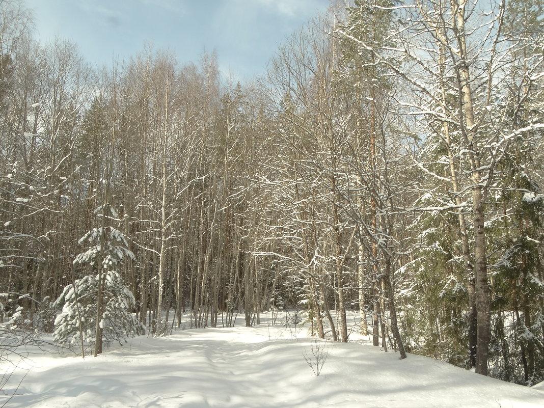 март..в лесу.. - Михаил Жуковский