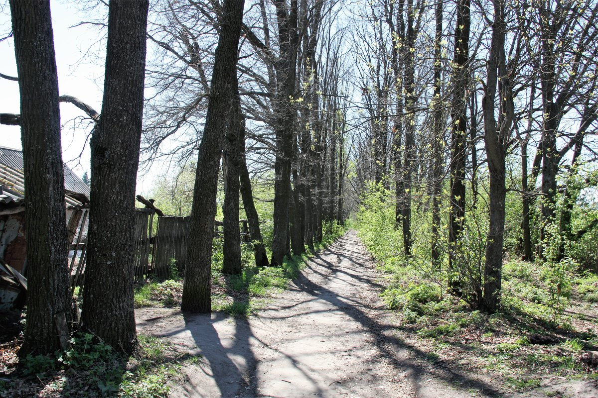 Весна - Владимир Холодницкий
