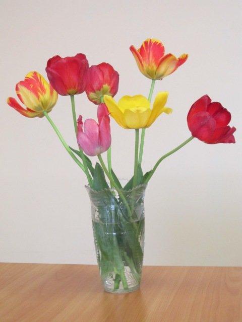Букет тюльпанов разных - Дмитрий Никитин