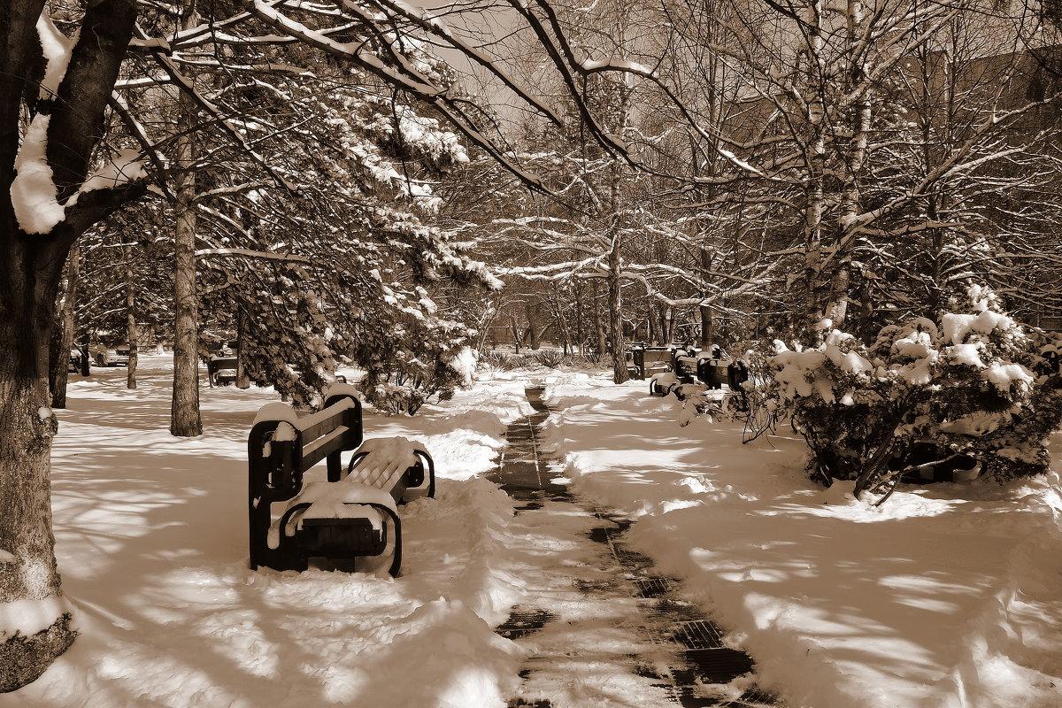 Снег в Краснодаре - Роман Величко