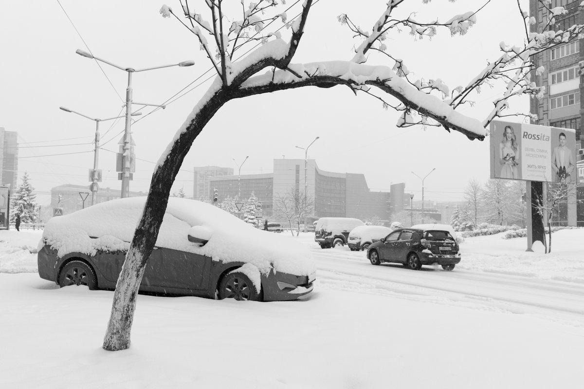 Снежная весна - Валерий Михмель