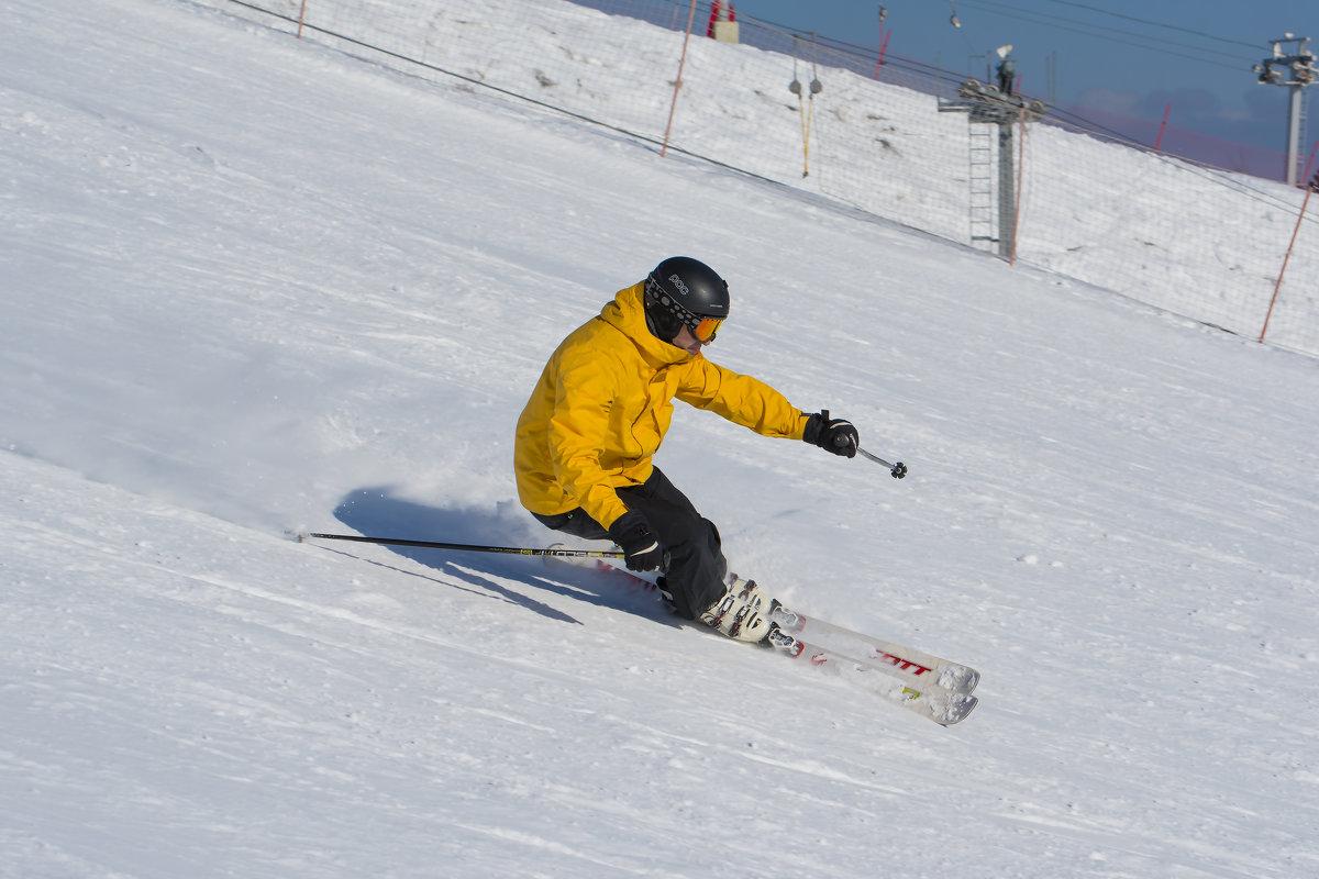 Лыжник - Валерий Шурмиль
