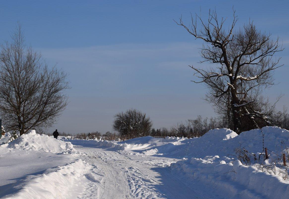 Зимняя дорога. - vkosin2012 Косинова Валентина