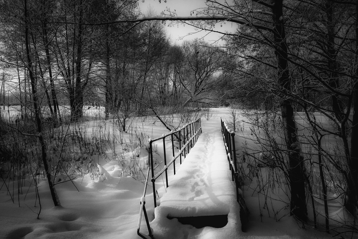Зимний пейзаж............. - Александр Селезнев