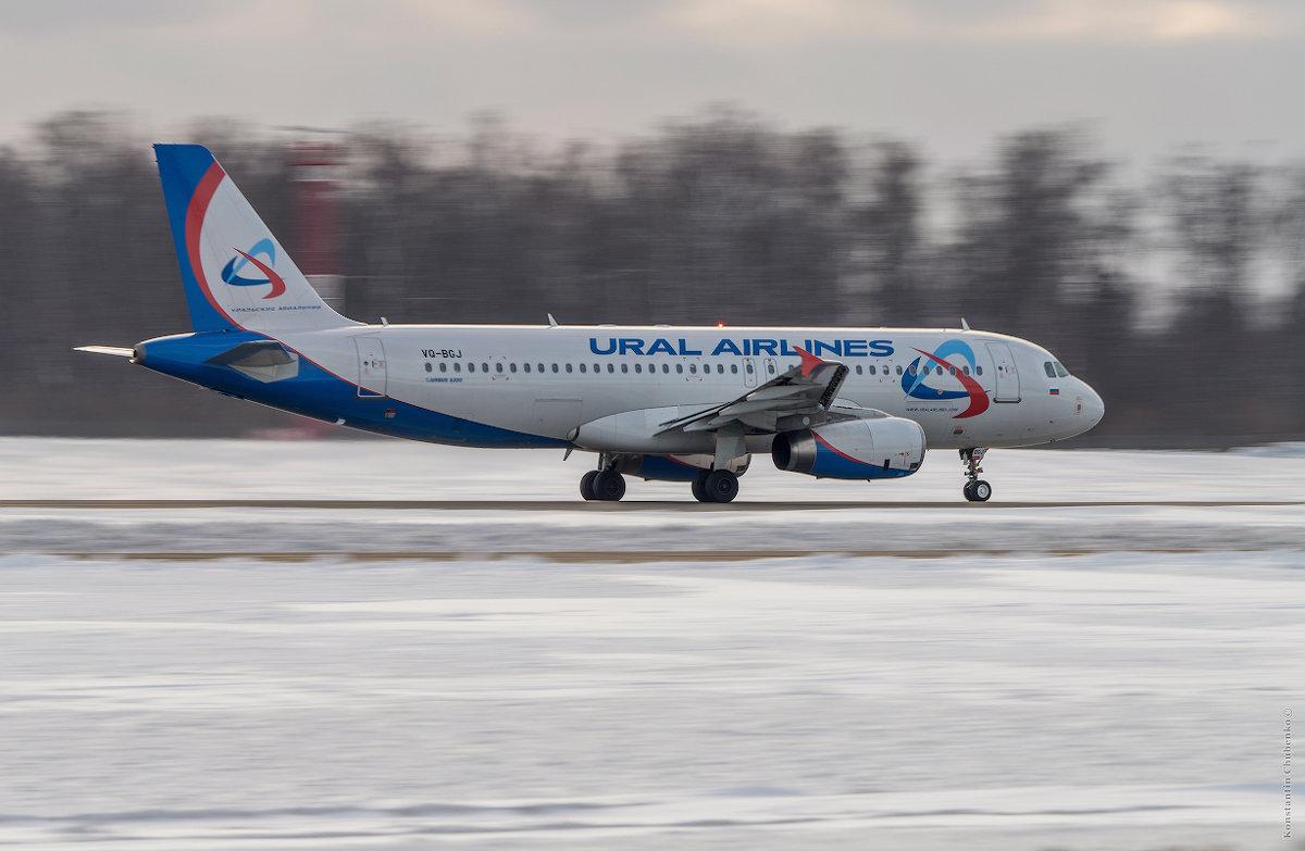 Ural  AirLines - KotoPalych Gf