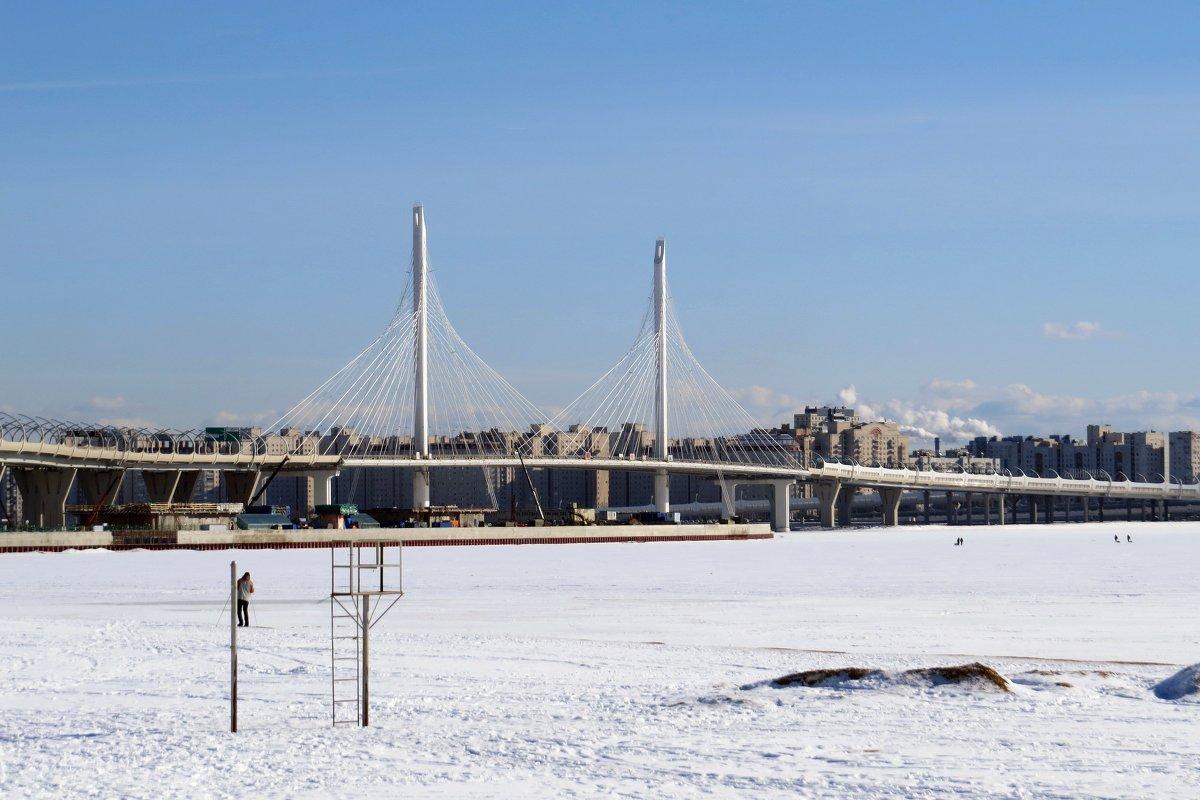 Мост - Вера Щукина