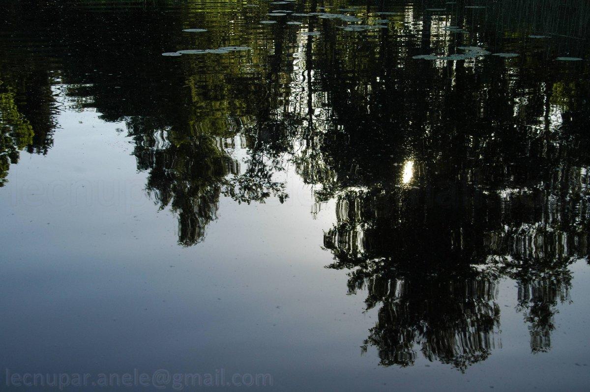 Отражение - Elena Gosteva