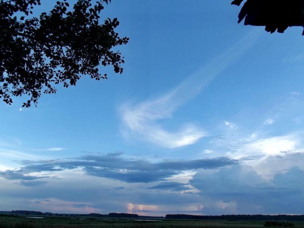 Ангел летает перед моим домом - Светлана Рябова-Шатунова
