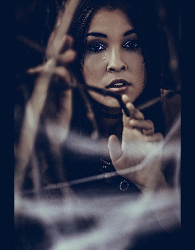 Черная вдова - Татьяна Долгачева