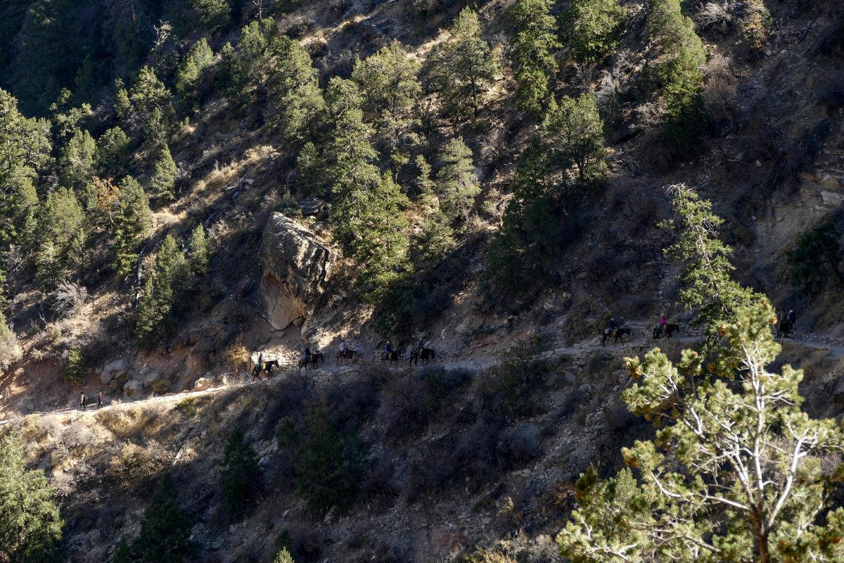 Прогулка верхом  по горным индейским тропам (Гранд-Каньон, США) - Юрий Поляков