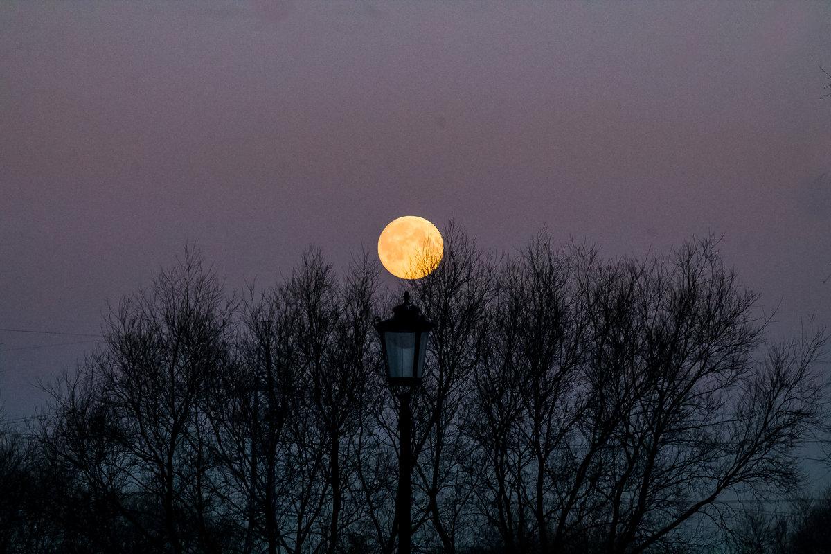 луна - navalon M