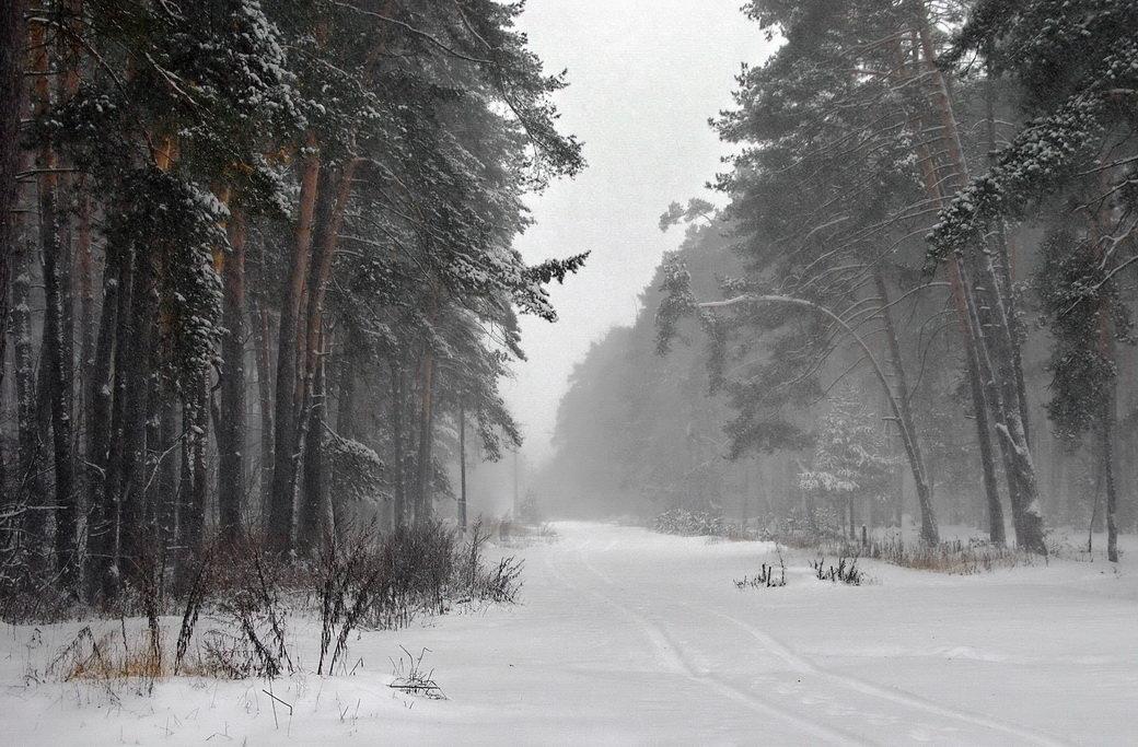 31 марта 2018... - Лесо-Вед (Баранов)