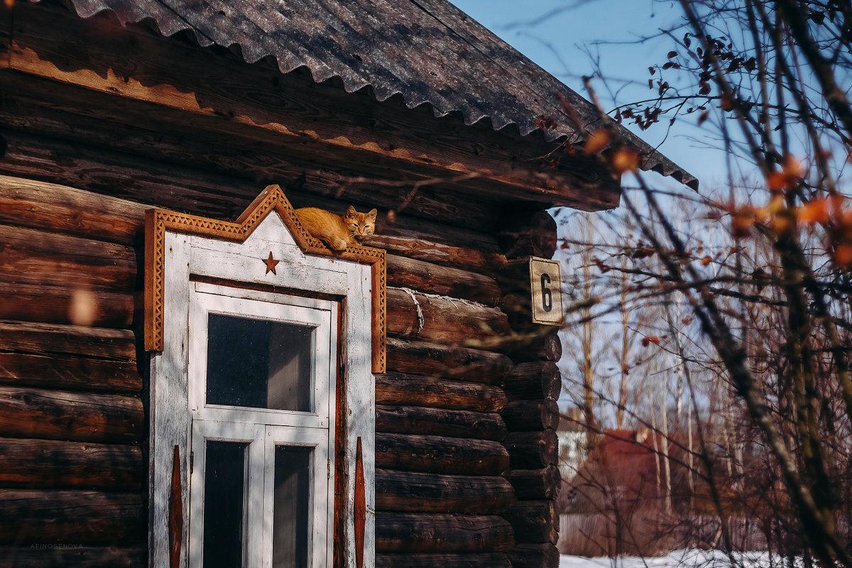 Котейка - Татьяна Афиногенова