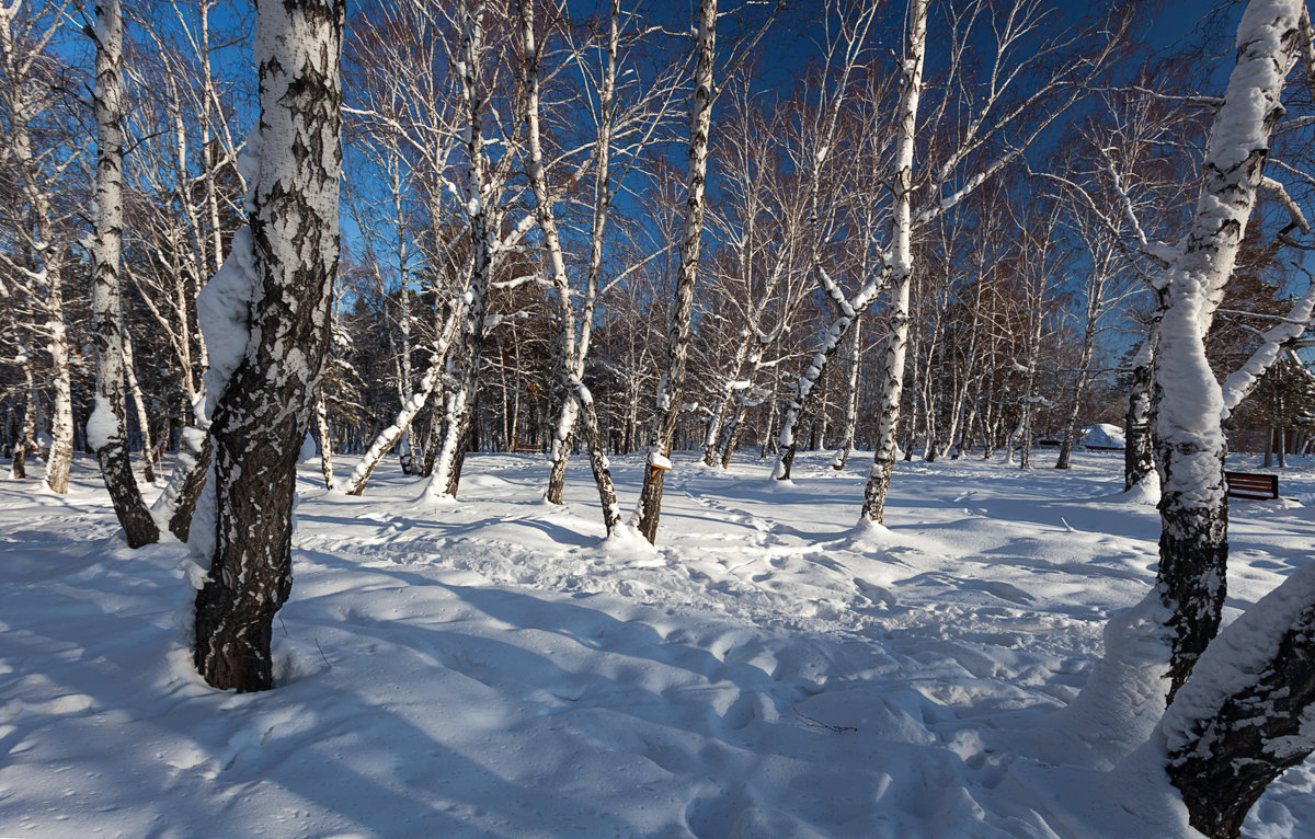 Прошедшая зима - Анатолий Иргл