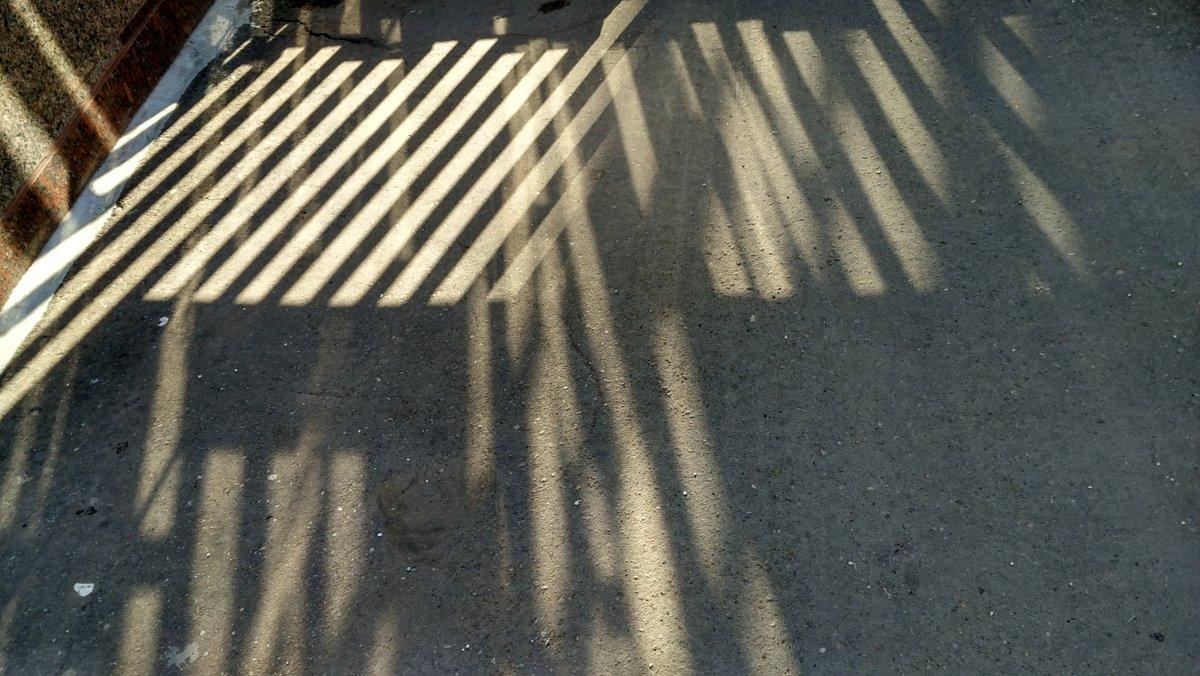 Немного солнца на холодном асфальте - Tanja Gerster