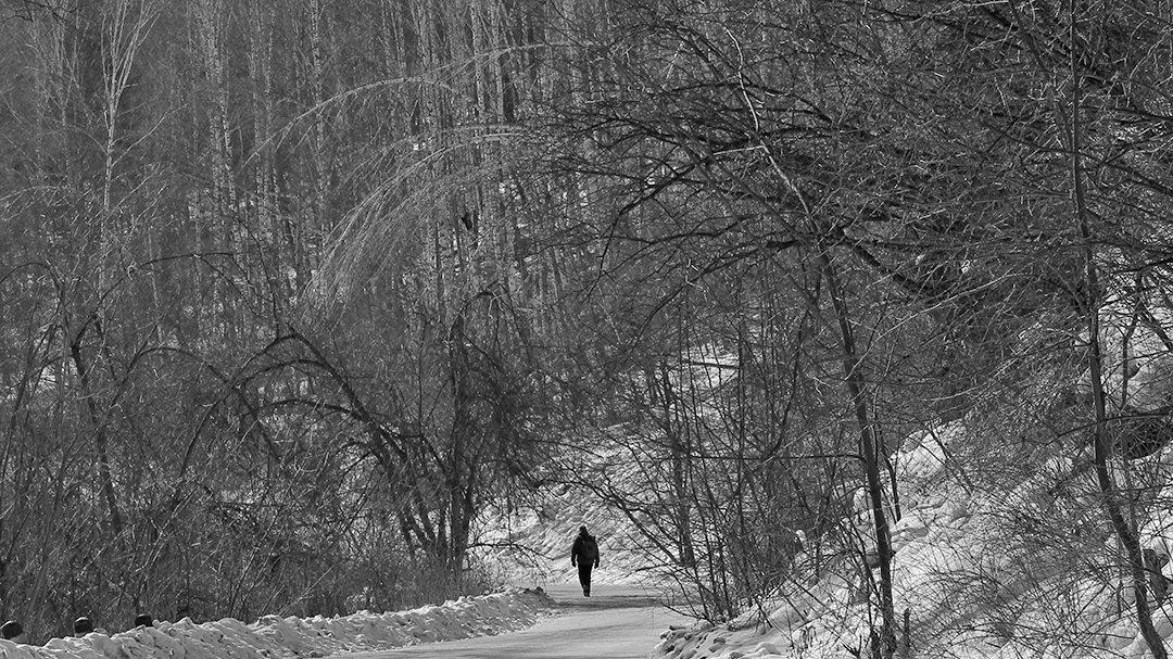 Одинокий путник - Екатерина Торганская