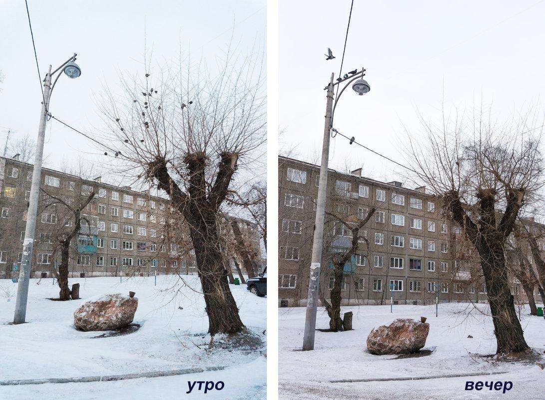 Прогулки в поисках Метафизики - Галина Щербакова