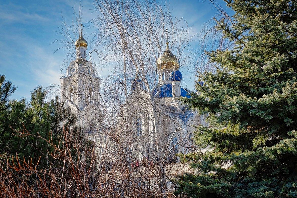 Вербное воскресенье - Александр Гапоненко