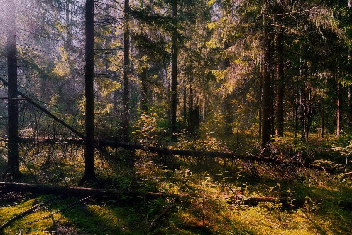 В  лесной  чаще - Михаил (***NeonfrozeD***)