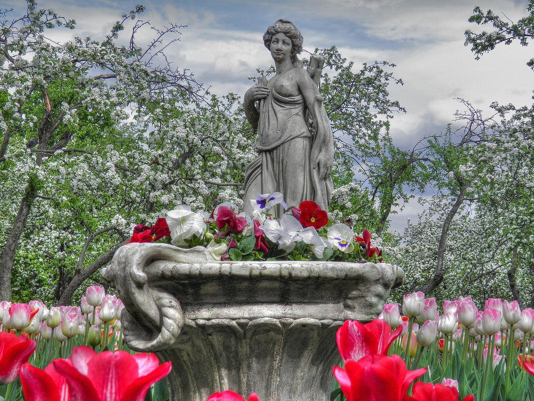 Цветение в Коломенском - Евгения Photolife