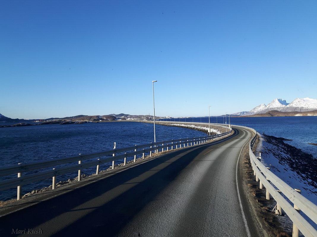 Норвегия - Mari Kush