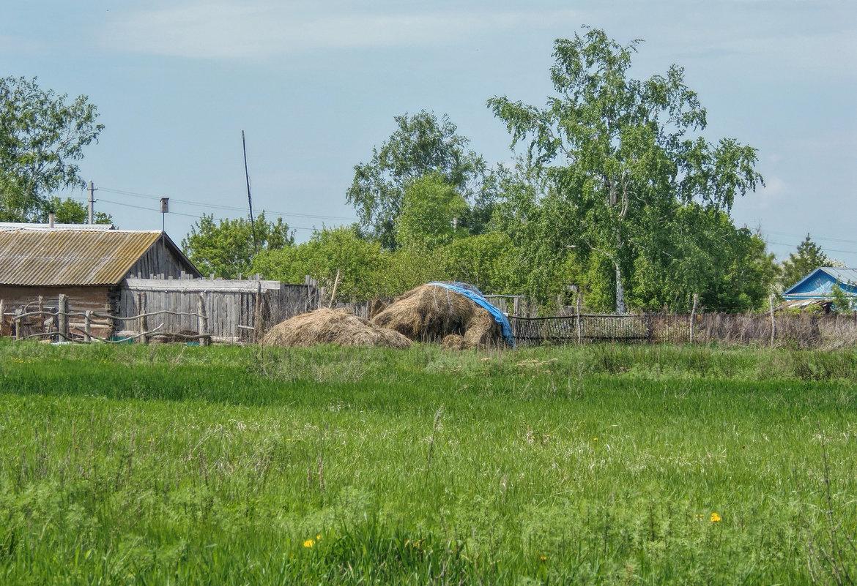 Весна в деревне - Наталья Ильина