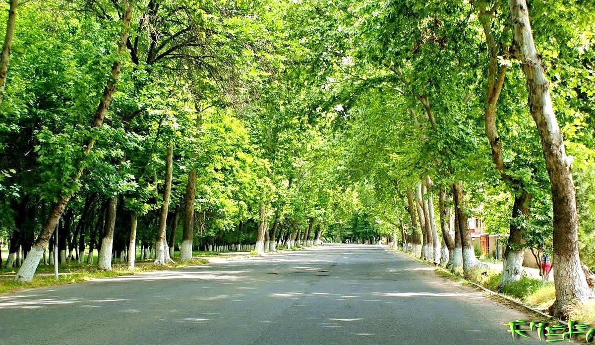Обычная городская улочка - Mir-Tash