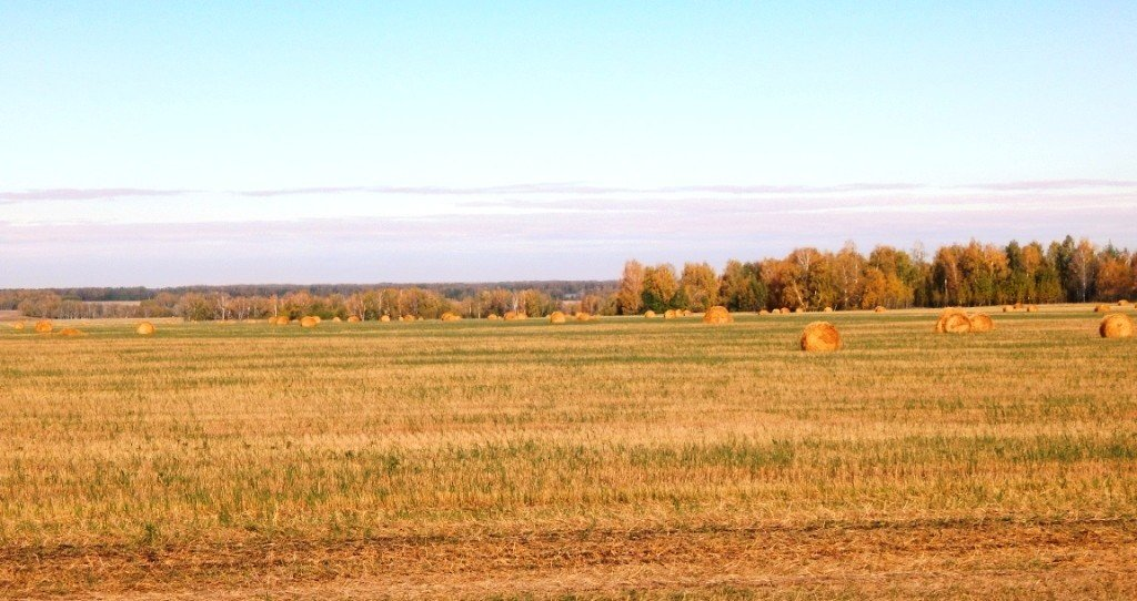 Осень на Алтае - Нина