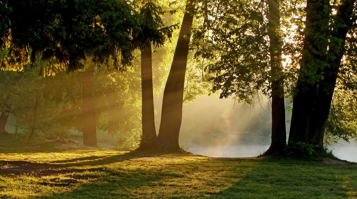 В утреннем парке...... - Юрий Цыплятников