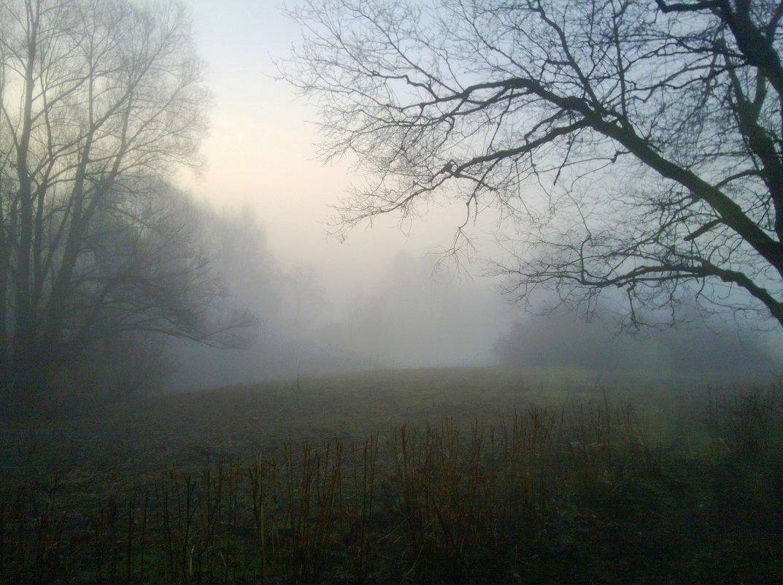 Таинственная туманность - Татьяна Лобанова