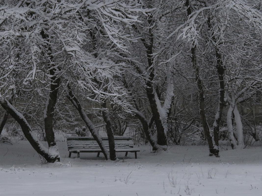 Зимняя графика - Наталья