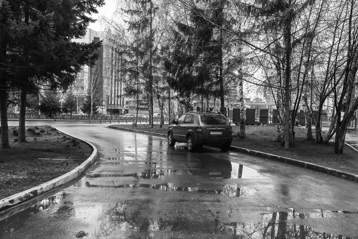 дождливое - cfysx