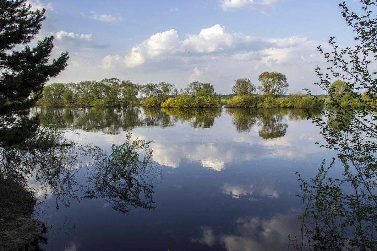 река Ипуть - оксана