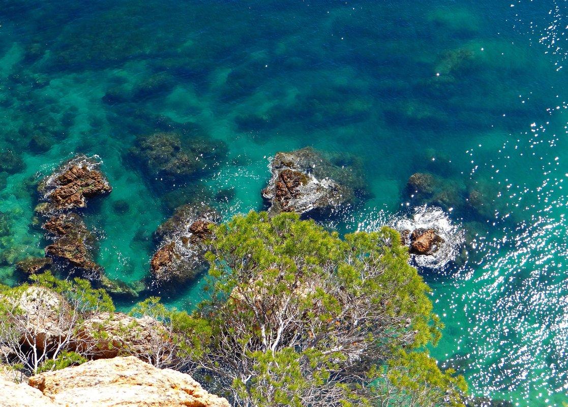 Море в Коста Браве - Лариса