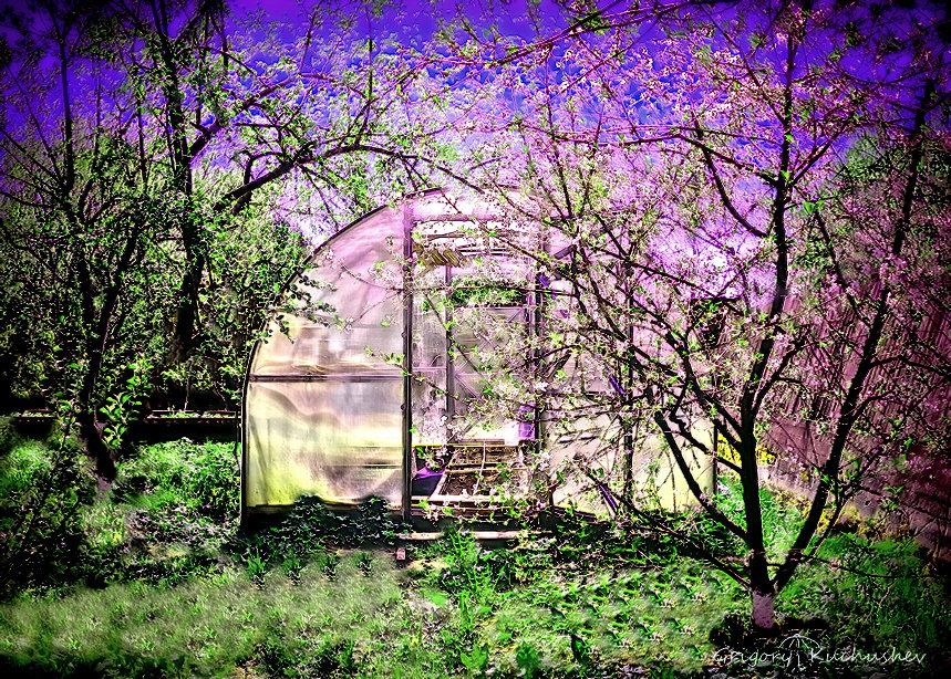 Майский сад - Григорий Кучушев