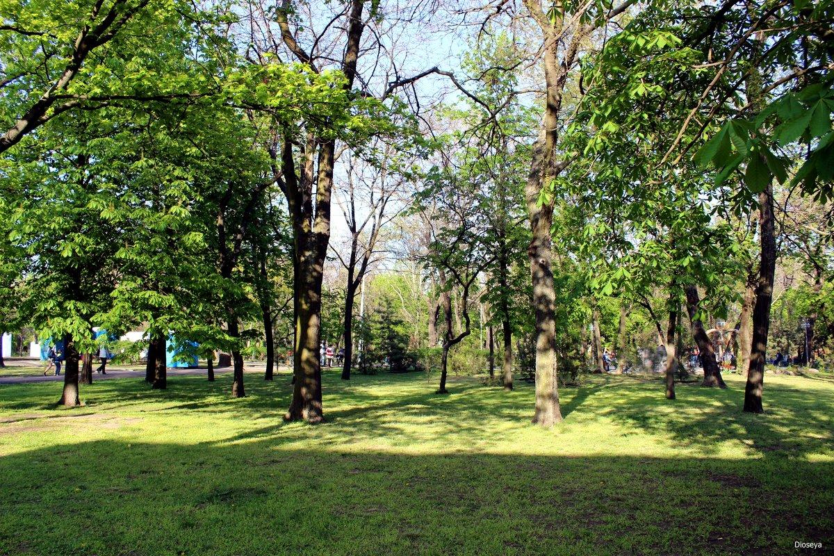 В городском саду - Татьяна Пальчикова