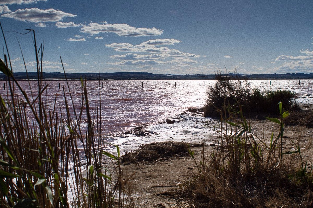 Розовое озеро Салинас. Испания - Людмила Кашкина