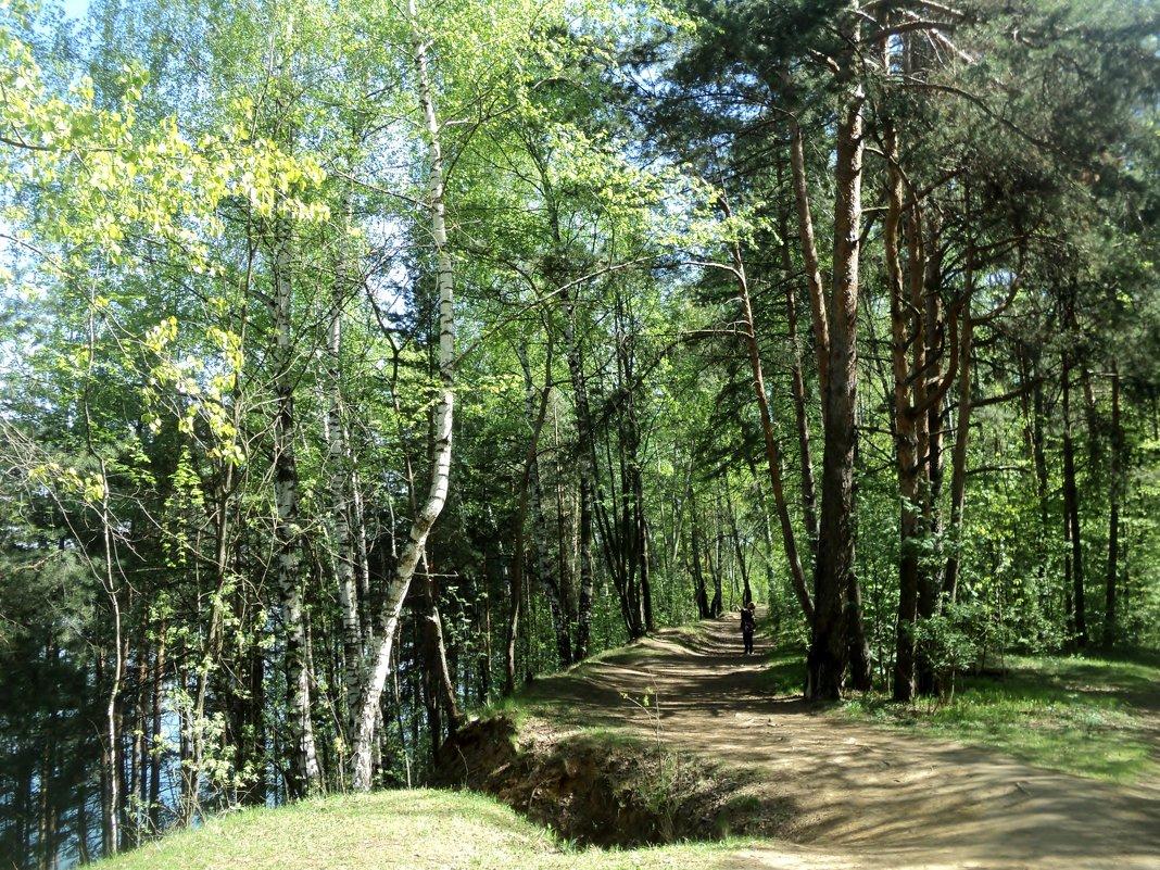 А может, чтобы спасти это лес, надо его внести в красную книгу заповедных зон? - Ольга Кривых