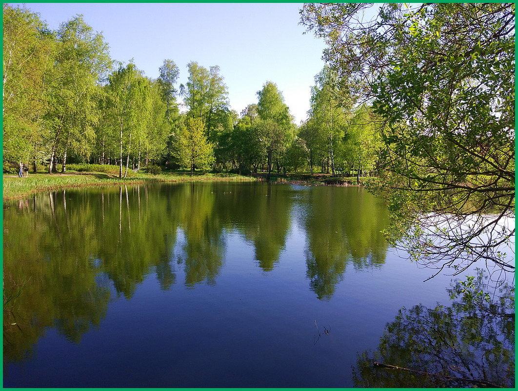 В Ботаническом саду... - Николай Дони